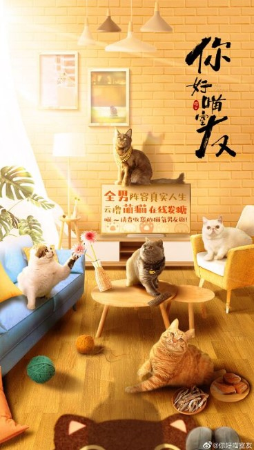 My Catmate cast: Victor Ma, Zheng Yun Long, Li Hao. My Catmate Release Date: 28 October 2020. My Catmate Episodes: 20.