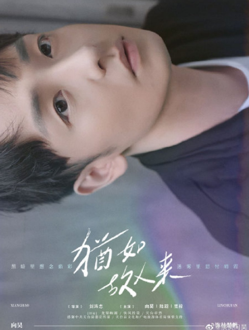 The Memory cast: Xiang Hao. The Memory Release Date: 15 February 2021. The Memory Episodes: 10.